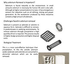 Selenium Removal MBBR Brochure